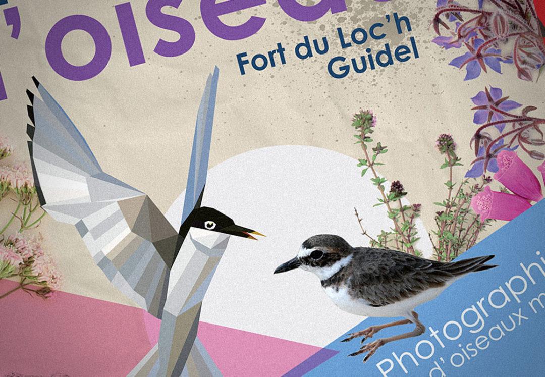 Terre d'oiseaux / Fort du Loch / 2016